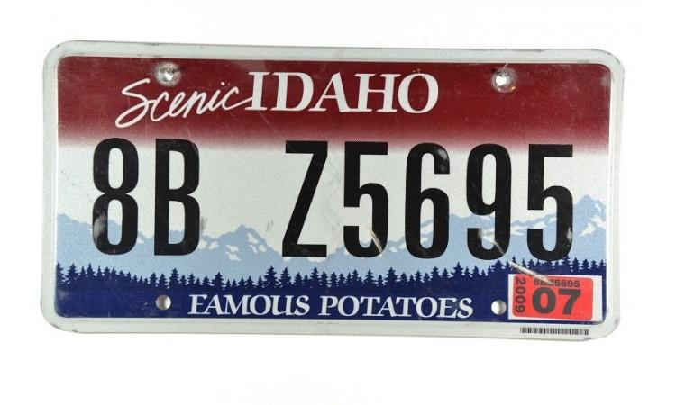 Année 2009 Idaho Potatoes State