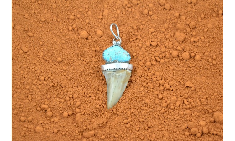 Pendentif dent de requin et turquoise